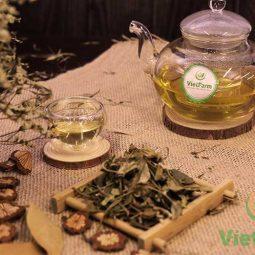 Mua dây thìa canh Vietfarm để có những tách trà thơm ngon, bổ dưỡng