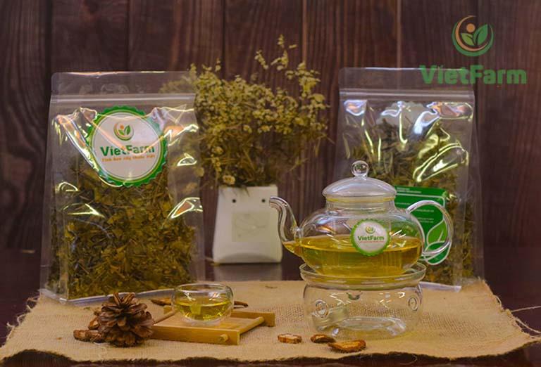 Dây thìa canh Vietfarm đảm bảo chất lượng
