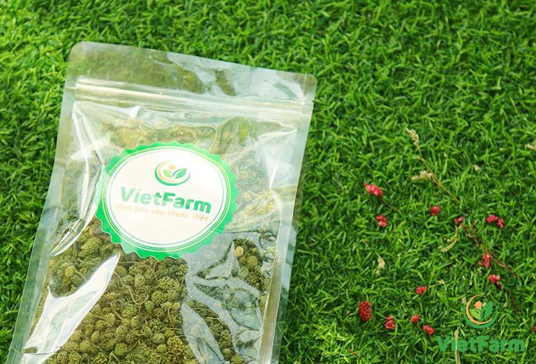 Nụ hoa tam thất Vietfarm chất lượng cao, đảm bảo dược tính tối đa