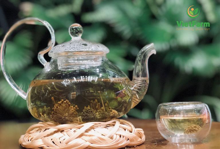 Hoa tam thất dùng pha trà trị mất ngủ rất hiệu quả