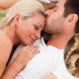Rượu cá ngựa là bài rượu thuốc chữa sinh lý yếu cực tốt cho nam giới