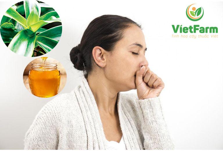 Bài thuốc mật ong kết hợp cùng lá lược vàng mang lại hiệu quả cực cao trong việc chữa viêm họng