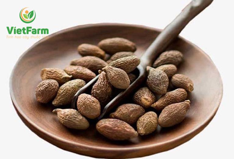 Vietfarm cung cấp hạt đười ươi chất lượng