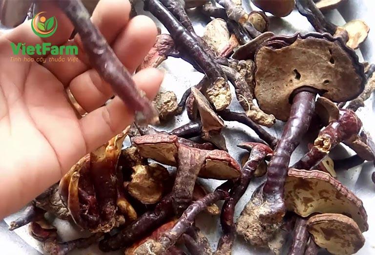 Nấm lim giả có thể gây ra ngộ độc