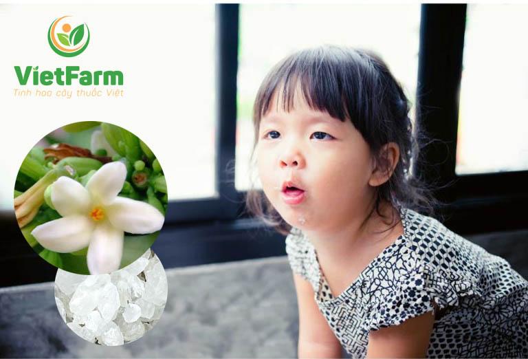Hoa đu đủ đực kết hợp cùng với đường phèn có tác dụng chữa ho cho trẻ em