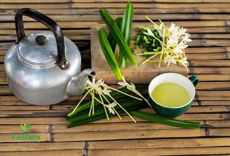 Người bệnh tiểu đường nên uống trà lá dứa thường xuyên