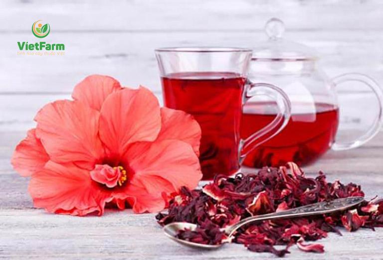 Trà hoa atiso - một thức uống thanh lọc thải độc quen thuộc