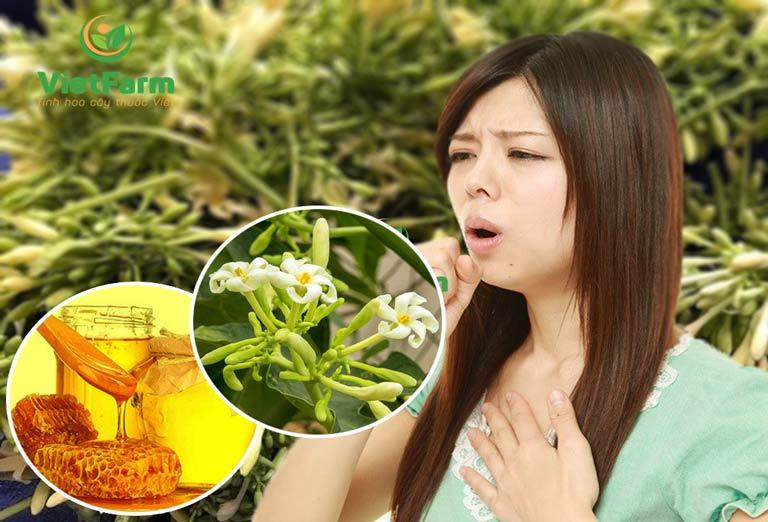 Tác dụng của hoa đu đủ ngâm mật ong trong việc chữa ho và viêm họng