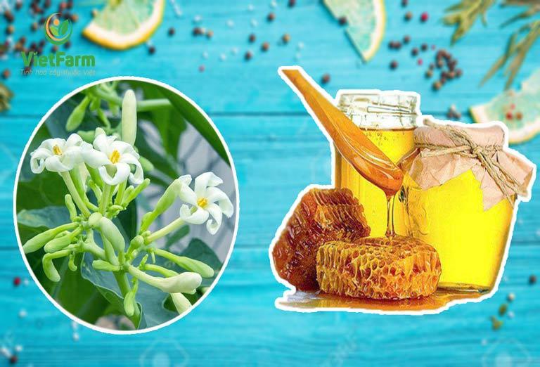 Phụ nữ mang thai không được sử dụng hoa đu đủ đực ngâm mật ong