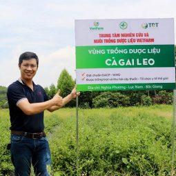 Cán bộ cấp cao cùng nhân viên Vietfarm tại vùng trồng dược liệu cà gai leo Bắc Giang