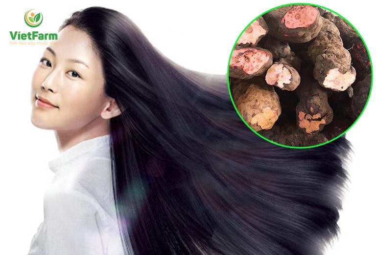 Bài thuốc đen tóc cực hiệu quả