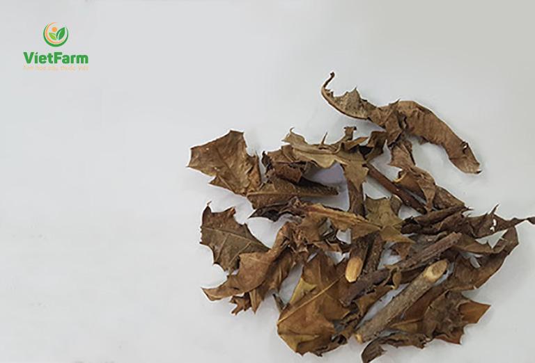 Dược liệu khô dùng trong bài thuốc chữa bệnh xương khớp
