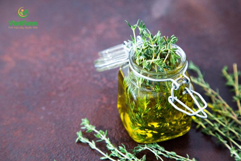 Trà cỏ xạ hương giúp an thần, tốt cho hệ thần kinh