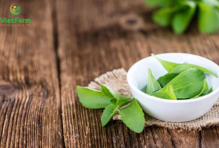 Các thành phần trong cỏ ngọt hoàn toàn lành tính và ít gây tác dụng phụ