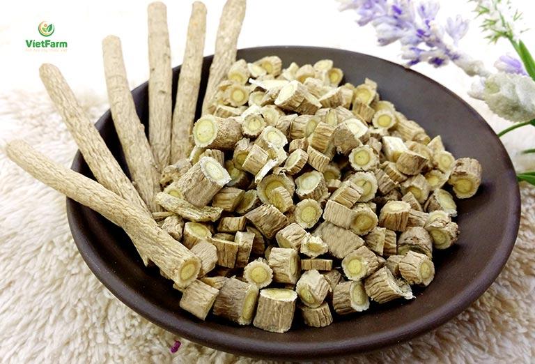 Cây thuốc được sử dụng nhiều để chữa cảm lạnh, viêm xoang, viêm mũi