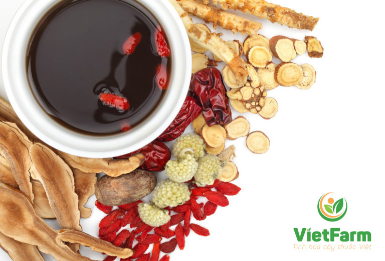 Bài thuốc từ cây hoàng liên hiệu quả trong việc điều trị đau dạ dày, tá tràng