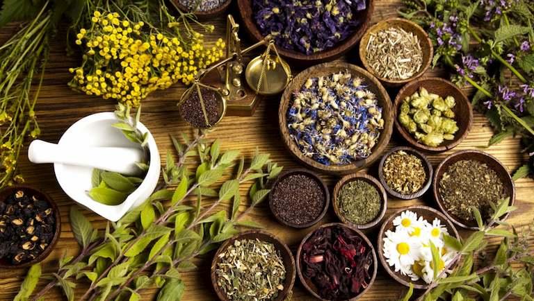 Nên áp dụng bài thuốc Đông y thường xuyên để có hiệu quả trị bệnh tốt nhất
