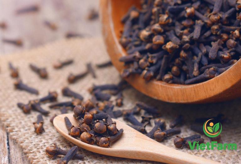 Vietfarm - thương hiệu cung cấp dược liệu chất lượng hàng đầu hiện nay