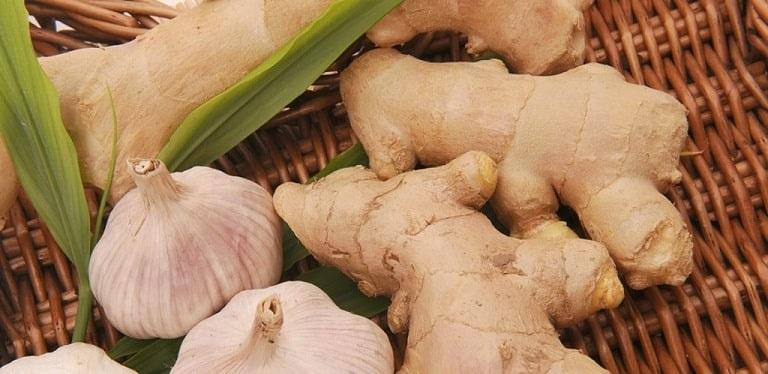 Các thực phẩm chứa kháng sinh tự nhiên sẽ có tác dụng rất tốt để hỗ trợ trị viêm amidan