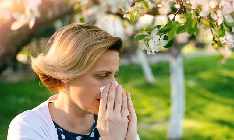 Người dị ứng với phấn hoa rất dễ bị viêm mũi xoang cấp vào thời điểm giao mùa
