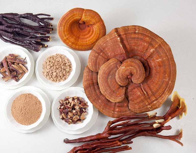 Chữa viêm tai giữa cấp bằng thuốc Đông y hiệu quả và lành tính