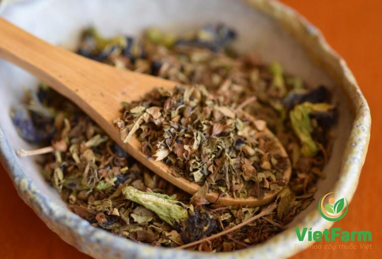 Hương nhu là dược liệu chính trong nhiều bài thuốc trị bệnh