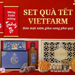 Đông trùng hạ thảo Vietfarm ra mắt các set quà tặng sức khoẻ thời thượng nhân dịp Tết Tân Sửu 2021