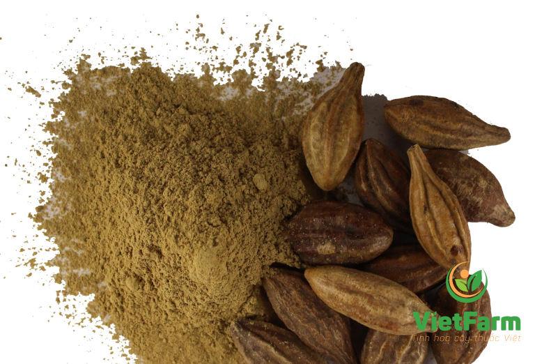 Dược liệu khô tán bột được sử dụng phổ biến trong nhiều bài thuốc chữa bệnh