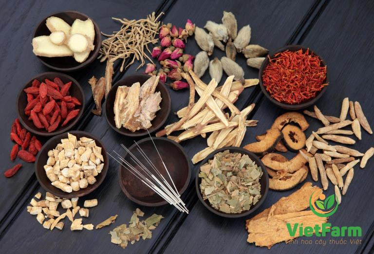 Kết hợp mộc hương cùng các dược liệu khác mang đến hiệu quả tốt hơn