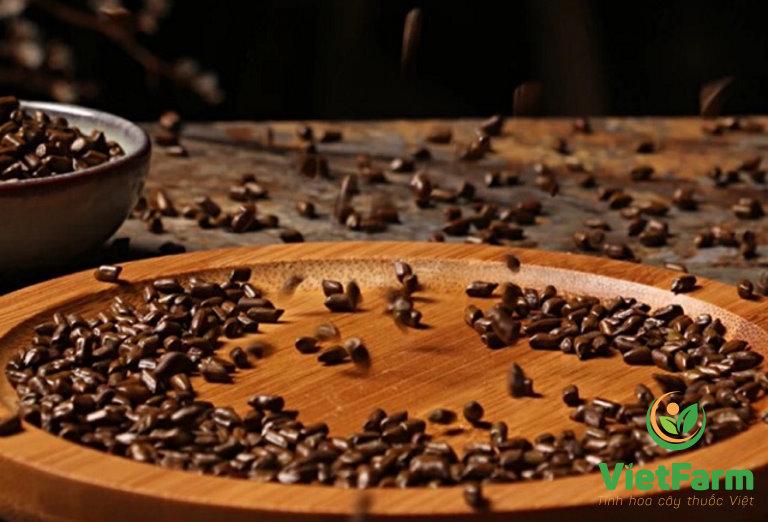 Dược liệu Vietfarm - sản phẩm chất lượng được nhiều người tin dùng