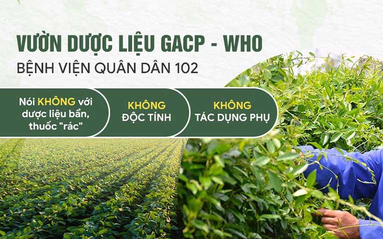 Bài thuốc Đông Y từ Bệnh viện Tai Mũi Họng Quân dân 102 đều được bào chế từ nguyên liệu sạch