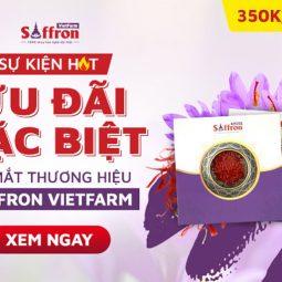 Saffron Vietfarm - Tuần lễ vàng trải nghiệm sản phẩm nhụy hoa nghệ tây tốt nhất thế giới giá siêu ưu đãi [Chỉ từ 350K]