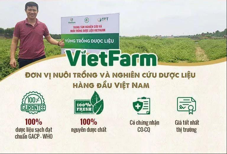 Vườn trồng dược biệt Vietfarm, chuyên canh hữu cơ, đạt chuẩn GACP - WHO