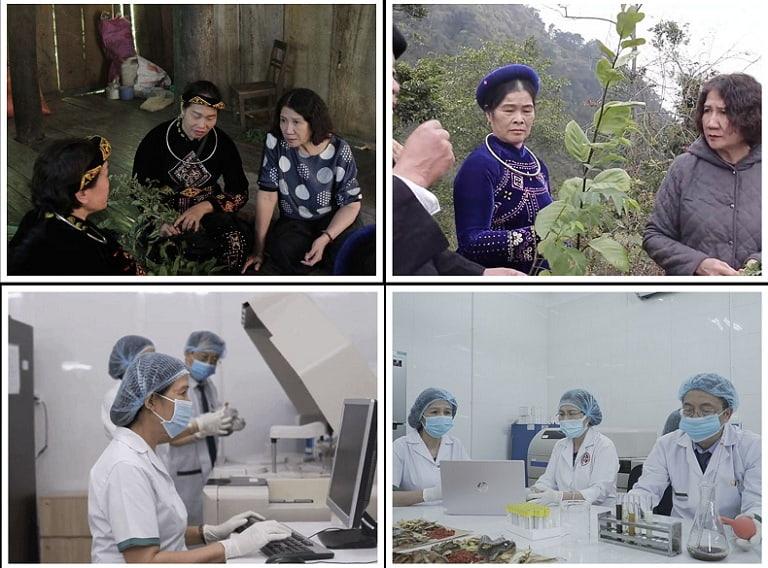 Hình ảnh đội ngũ bác sĩ Trung tâm không ngại khó khăn lên các bản làng tìm dược liệu và nghiên cứu tại phòng thí nghiệm